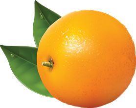 kaloriinost-apelsina1